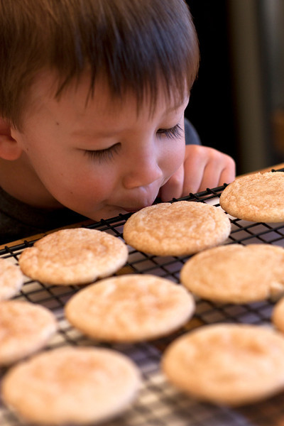 Our Favorite Snickerdoodles